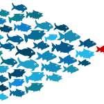 9 Dicas para Exercer a Liderança nas Organizações